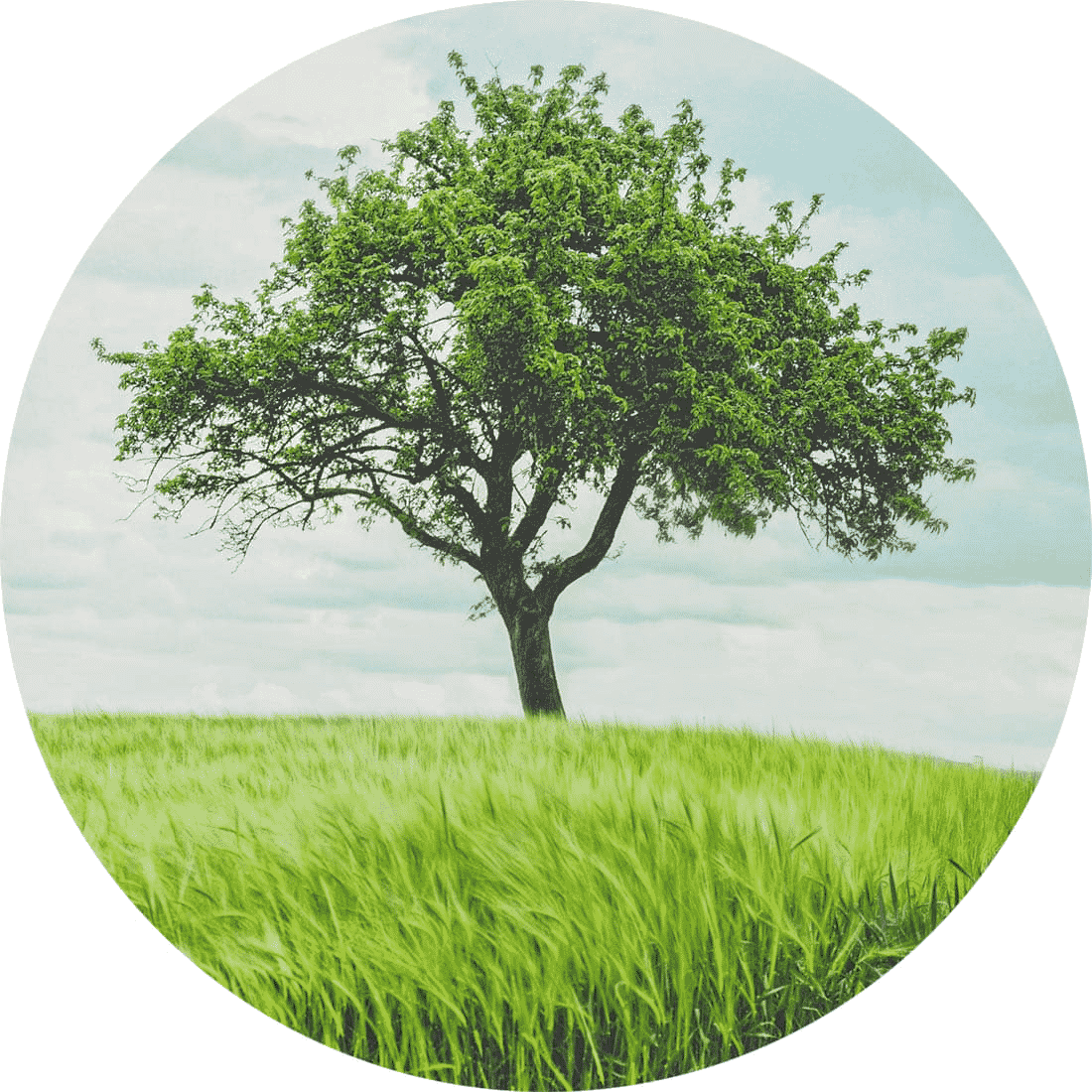 papeterie mariage eco-responsable